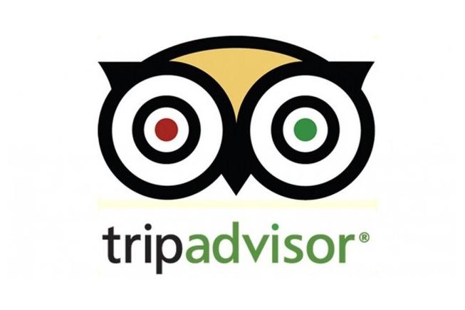 TripAdvisor - BF