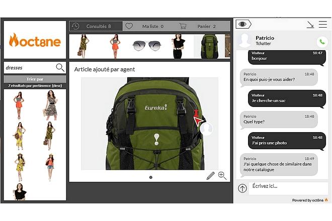 «Sur un site marchand, client et vendeur doivent partager la vue des produits»