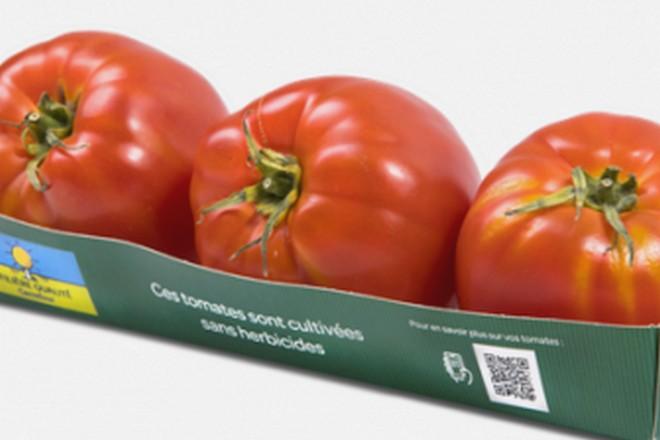 Carrefour poursuit le déploiement de sa blockchain sur la filière liée à la tomate