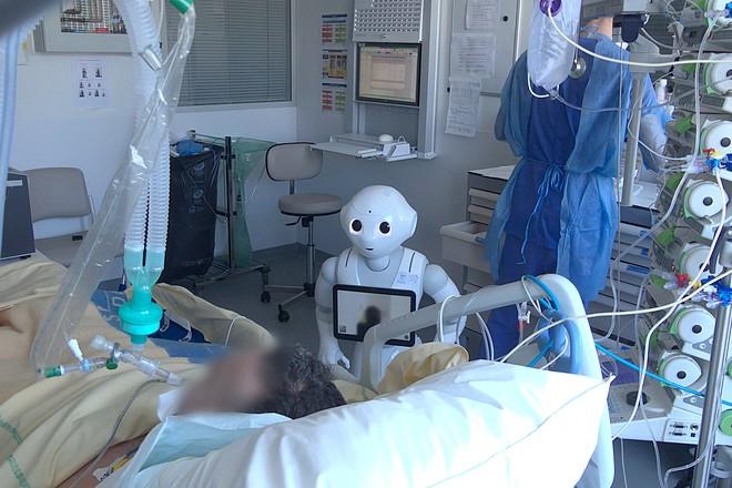 Le robot Pepper sur le terrain durant la crise du Covid-19