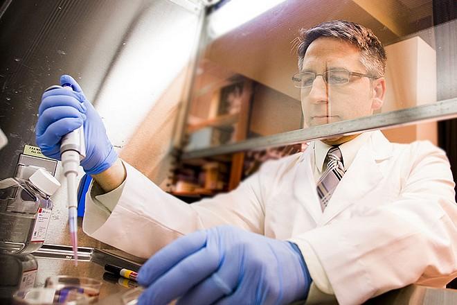 Chez Servier, la R&D du laboratoire pharmaceutique avance à pas prudents vers l'IA